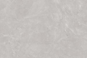 Bobbis Grey Webop (2)